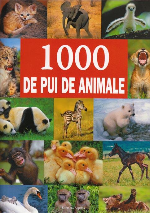 1000 PUI DE ANIMALE
