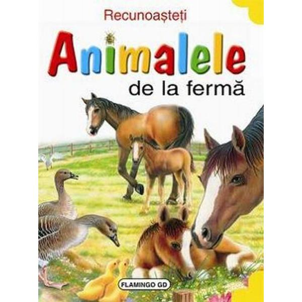 Recunoasteti animalele: Cal - Fernando Fernandez