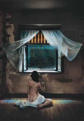 Puzzle Saudek:Susans night window,500pcs