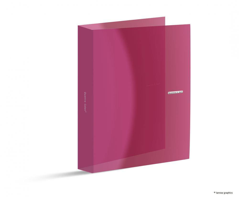 zzCaiet mec.QuattroColori,PP,2in,3cm,roz