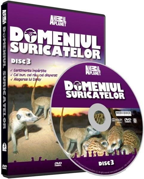 DOMENIUL SURICATELOR 3-DOMENIUL SURICATE