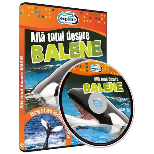 ALFA TOTUL DESPRE BALENE-ALFA TOTUL DESP