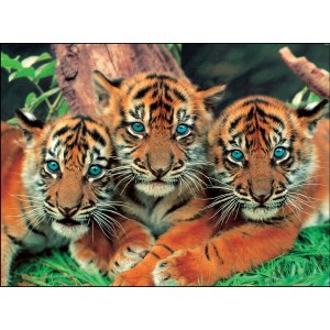 Puzzle Animale, 99 piese (4 modele asortate)