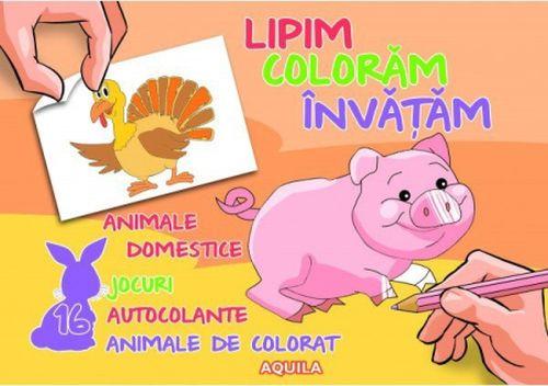 LIPIM, COLORAM, INVATAM. ANIMALE DOMESTICE