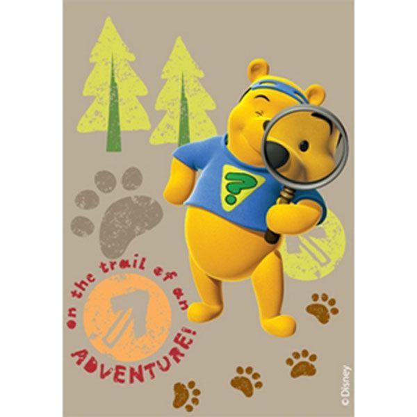 zzCovor Winnie the Pooh&Tigger 602 160x230