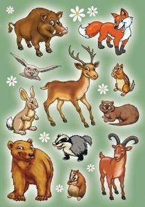 zzSticker Magic in relief, Animale salbatice