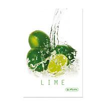Caiet coperta tare A5 mate FreshFruit lime,96file
