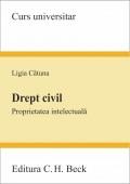 DREPT CIVIL PROPRIETATEA INTELECTUALA