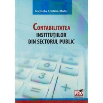 CONTABILITATEA INSTITUTIILOR DIN SECTORUL PUBLIC (MATEI)