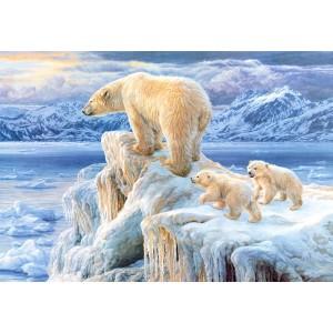 Puzzle 1000 Regatul arctic