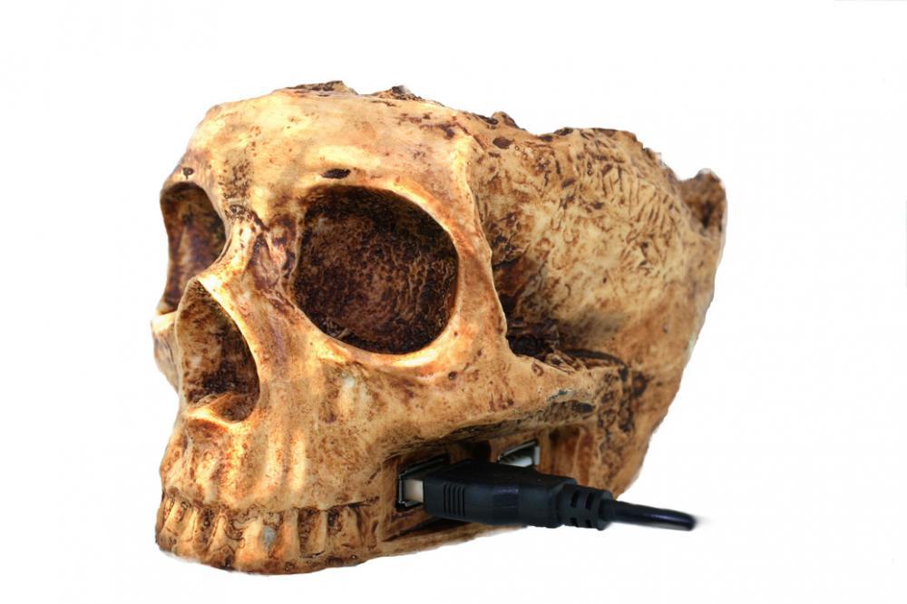 Hub USB 4port,Craniu