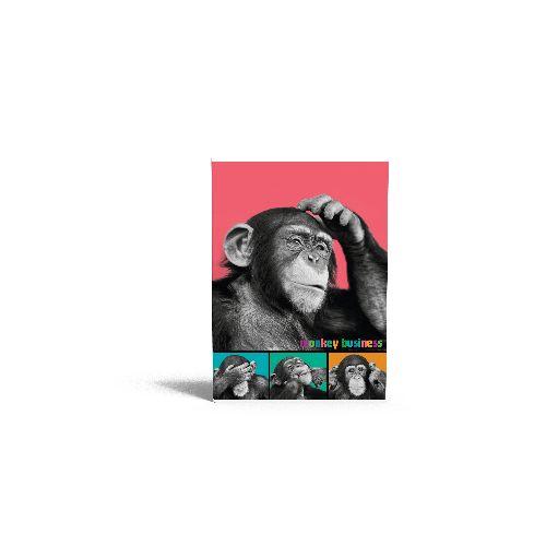 zzCaiet A4 dict.Monkey Business,40file