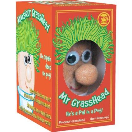 Domnul Cap de iarba