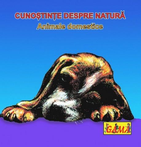 ANIMALE DOMESTICE/ PL.
