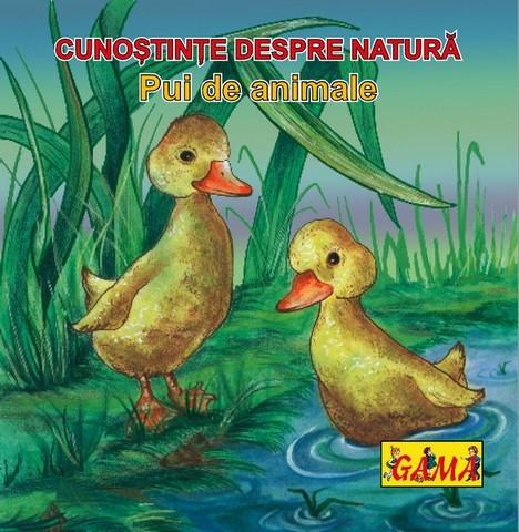 PUI DE ANIMALE/ PL.