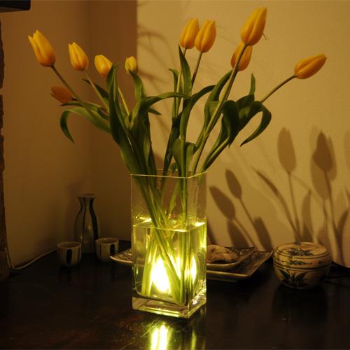 Lumina ambientala pt vaza