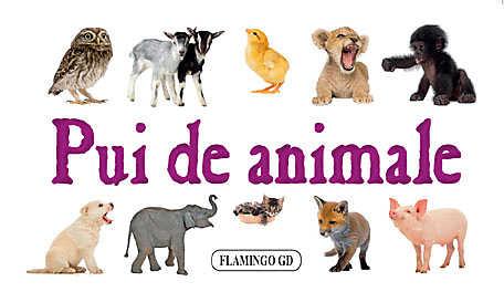 PUI DE ANIMALE