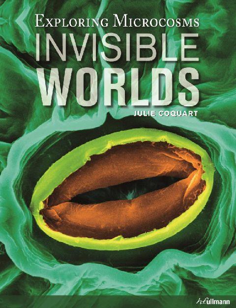 INVISIBLE WORLDS (BOOK + E-BOOK)