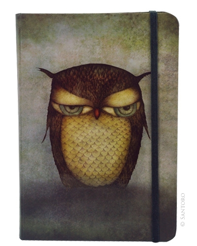 Carnet cu elastic Grumpy Owl