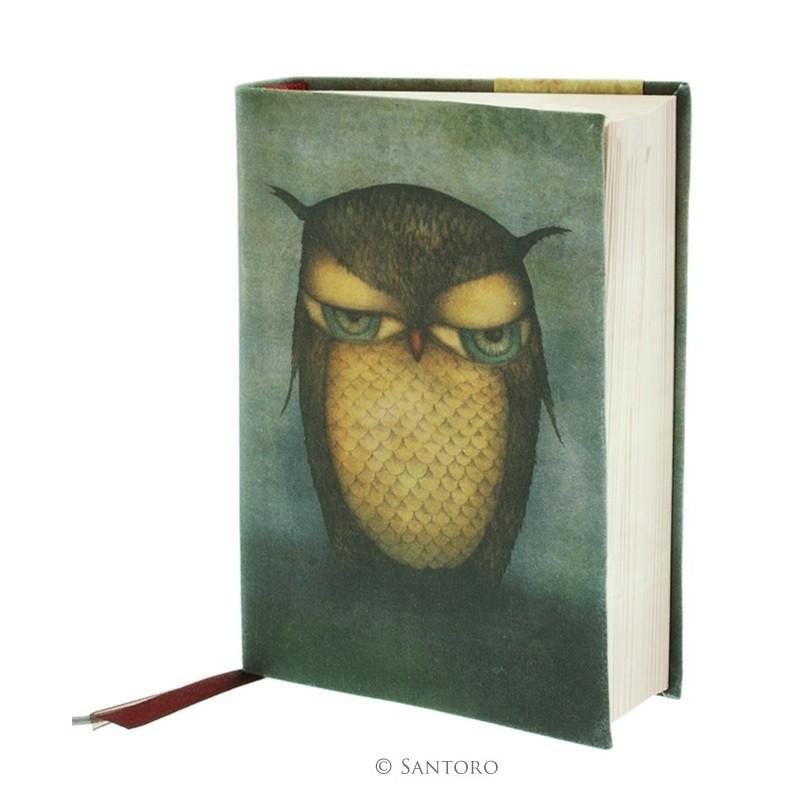 Agenda coperta panza,Grumpy Owl