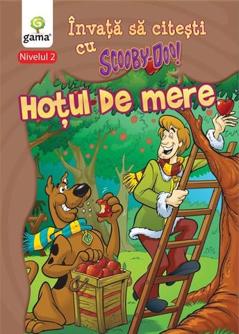 HOTUL DE MERE (NIVELUL 2)