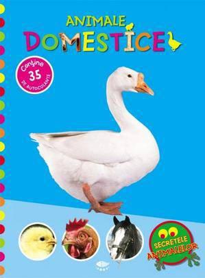 ANIMALE DOMESTICE. SECRETELE ANIMALELOR