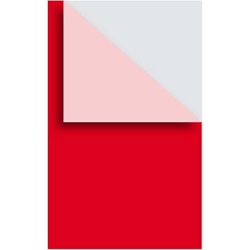 Carton A4,250g,10coli/set,rosu inchis