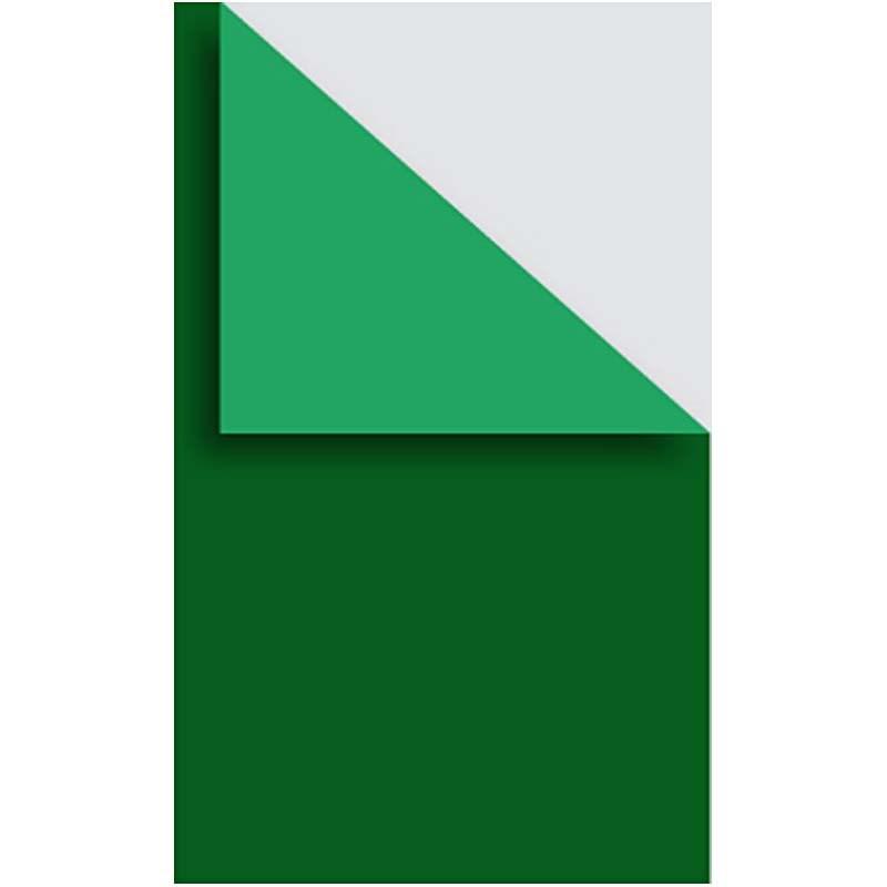 Carton A4,250g,10coli/set,verde inchis
