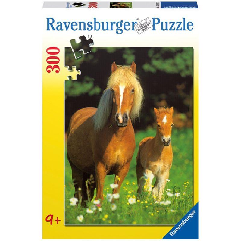 Puzzle cai, 300 pcs