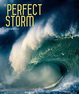 THE PERFECT STORM .