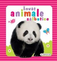 INVAT - ANIMALE SALBATICE