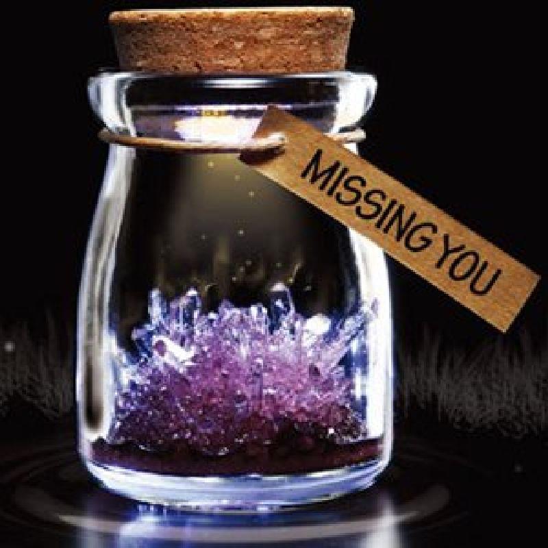 Borcan cu cristal dorinta (violet)