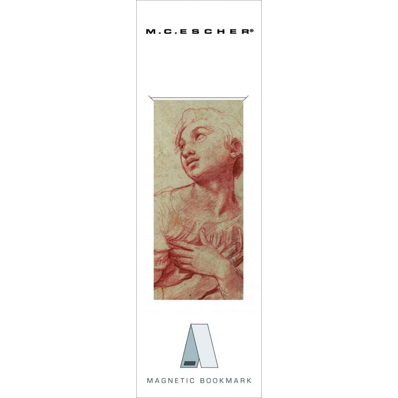 Semn carte Rafael Teylers Museum