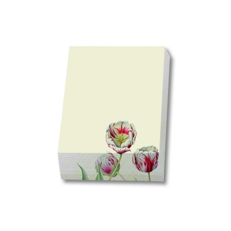Cub notite TulipaTeylerAnitaWalsmitSachs