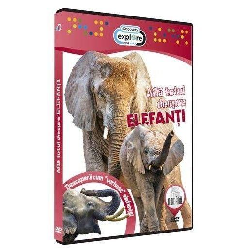 Afla totul despre Elefanti