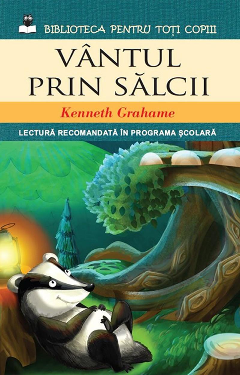 VANTUL PRIN SALCII