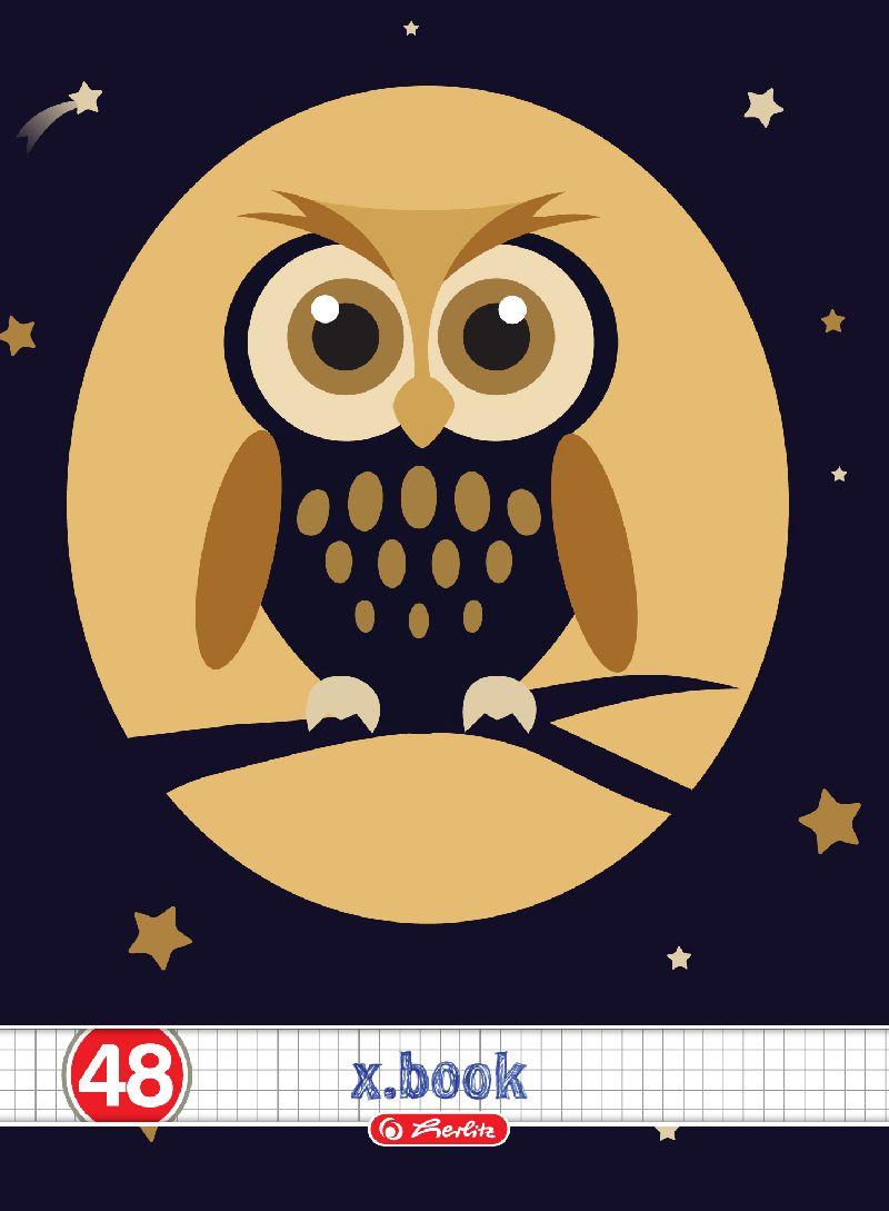 Caiet A4,48file,Owls,matematica