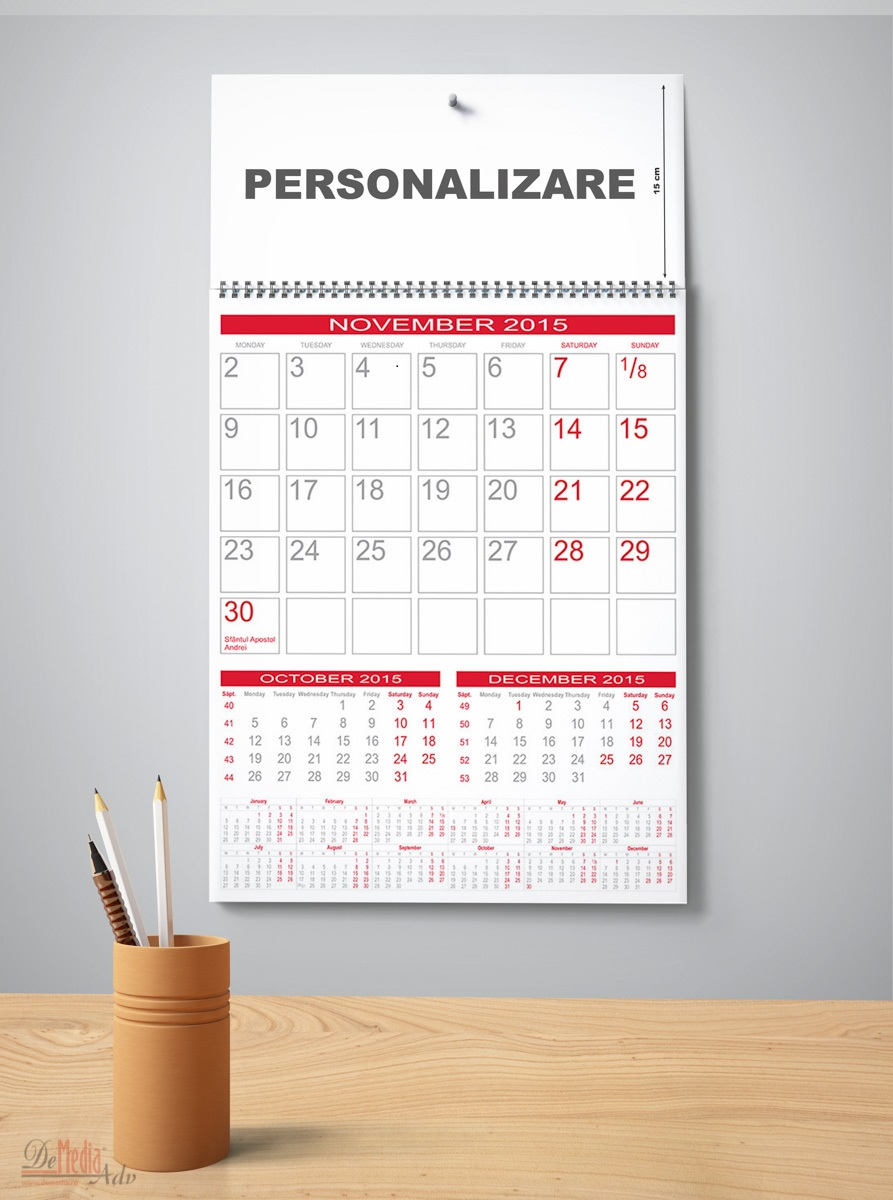 Calendar perete31x43cm,12f,Cameleon,2015