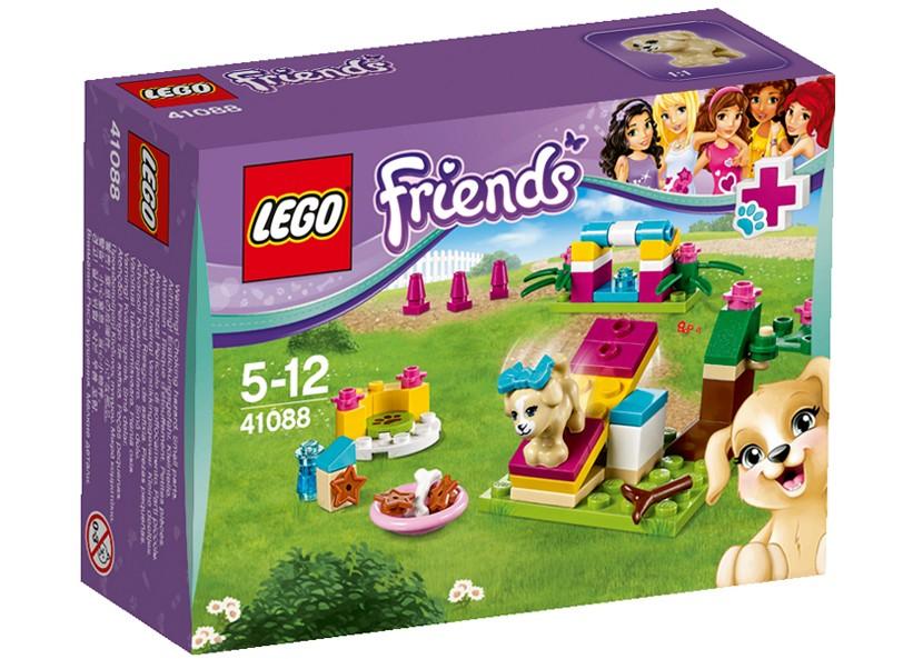 Lego-Friends,Dresarea caselusului