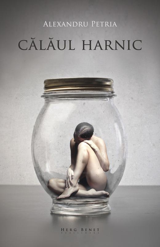 CALAUL HARNIC