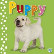 TOUCH AND FEEL PUPPY (B USY BABY)
