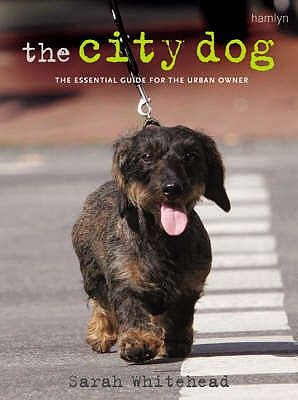 THE CITY DOG .