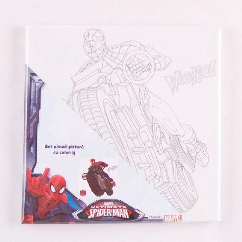 Panza pictura 20x30cm,cu coloriaj,Spiderman