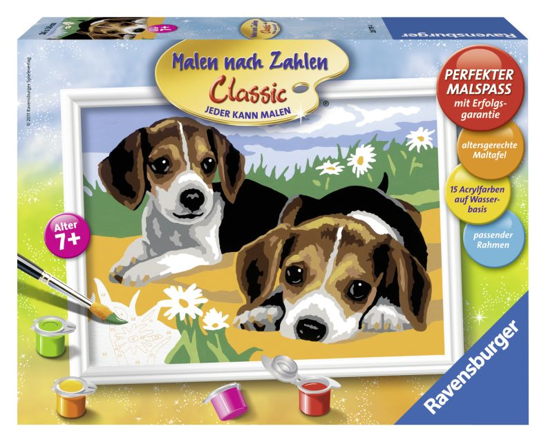 Ravensburger-Pictura pe nr,Pui Jack Russel,7+