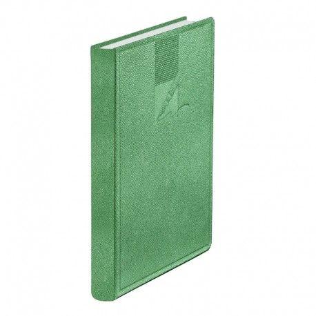 Agenda A6,nedatata,352p,lizard verde
