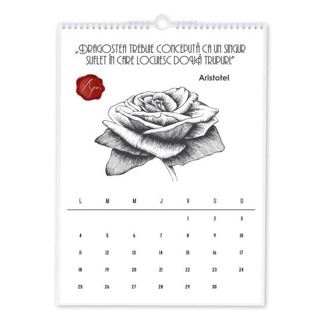 Calendar perete 30x42cm,Primul nostru an