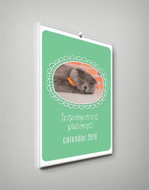 Calendar perete 30x42cm,Intelepciuni pis