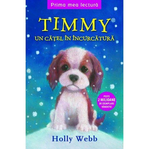 TIMMY, UN CATEL IN INCURCATURA