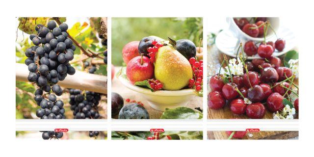Caiet cu spira A5,70file,Fructe,dictando