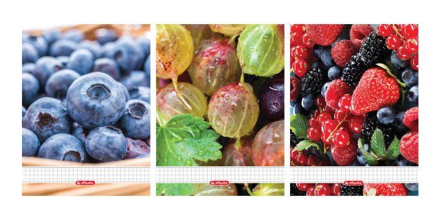 Caiet cu spira A5,70file,Fructe,matematica